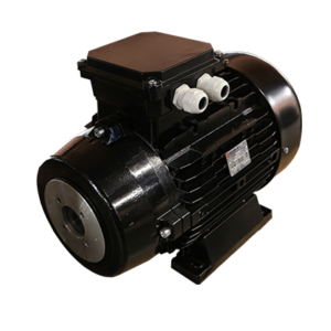 11kW Electric Motor - Hollow Double Flange